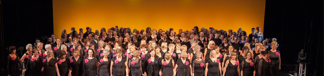 The Show Choir on Stage